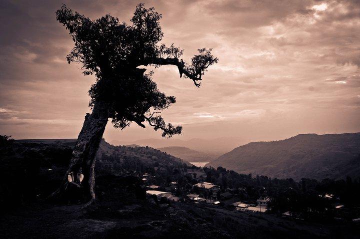 Travel in Panchgani